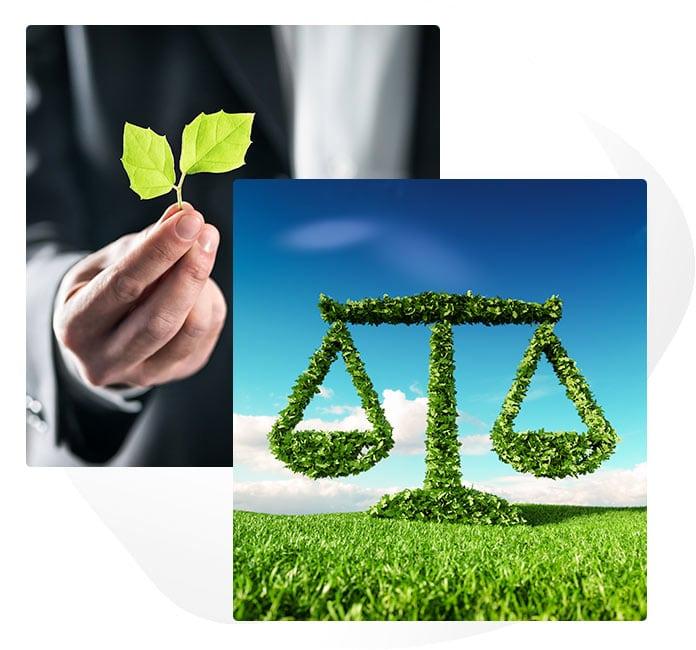 Sustainability Law Image